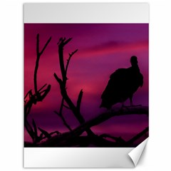 Vultures At Top Of Tree Silhouette Illustration Canvas 36  X 48   by dflcprints
