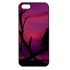 Vultures At Top Of Tree Silhouette Illustration Apple Iphone 5 Seamless Case (black) by dflcprints