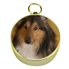 Shetland Sheepdog Gold Compasses by TailWags