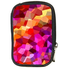 Geometric Fall Pattern Compact Camera Cases by DanaeStudio