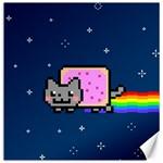 Nyan Cat Canvas 12  x 12