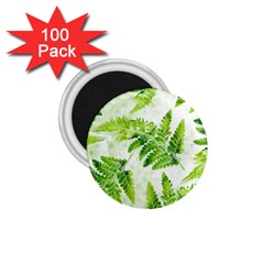Fern Leaves 1 75  Magnets (100 Pack)  by DanaeStudio