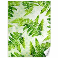 Fern Leaves Canvas 36  X 48   by DanaeStudio
