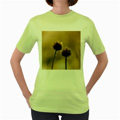 Withered Globe Thistle In Autumn Macro Women s Green T Shirt by wsfcow