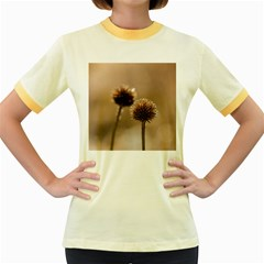 Withered Globe Thistle In Autumn Macro Women s Fitted Ringer T Shirts by wsfcow