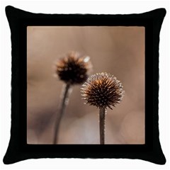 Withered Globe Thistle In Autumn Macro Throw Pillow Case (black) by wsfcow