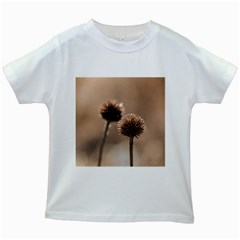 Withered Globe Thistle In Autumn Macro Kids White T Shirts by wsfcow