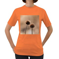 Withered Globe Thistle In Autumn Macro Women s Dark T Shirt by wsfcow