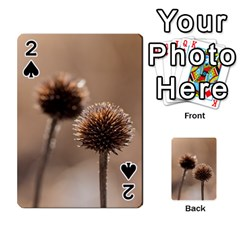 Withered Globe Thistle In Autumn Macro Playing Cards 54 Designs  by wsfcow