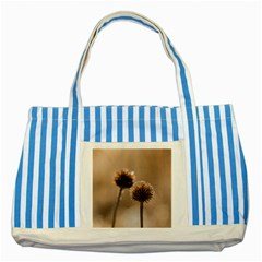Withered Globe Thistle In Autumn Macro Striped Blue Tote Bag by wsfcow