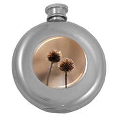 Withered Globe Thistle In Autumn Macro Round Hip Flask (5 Oz) by wsfcow