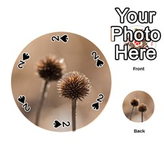 Withered Globe Thistle In Autumn Macro Playing Cards 54 (round)  by wsfcow