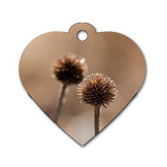 Withered Globe Thistle In Autumn Macro Dog Tag Heart (one Side) by wsfcow