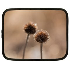 Withered Globe Thistle In Autumn Macro Netbook Case (xl)  by wsfcow