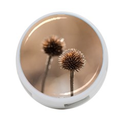 Withered Globe Thistle In Autumn Macro 4 Port Usb Hub (two Sides)  by wsfcow