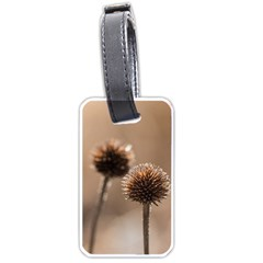 Withered Globe Thistle In Autumn Macro Luggage Tags (one Side)  by wsfcow