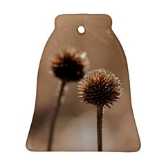 Withered Globe Thistle In Autumn Macro Bell Ornament (2 Sides) by wsfcow