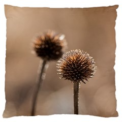 Withered Globe Thistle In Autumn Macro Large Cushion Case (one Side) by wsfcow