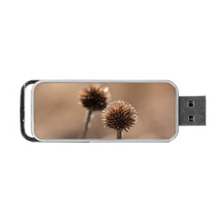 Withered Globe Thistle In Autumn Macro Portable Usb Flash (two Sides) by wsfcow