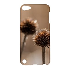 Withered Globe Thistle In Autumn Macro Apple Ipod Touch 5 Hardshell Case by wsfcow