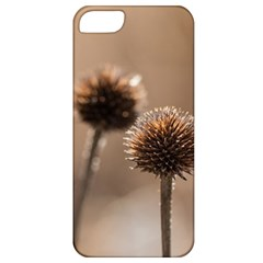 Withered Globe Thistle In Autumn Macro Apple Iphone 5 Classic Hardshell Case by wsfcow