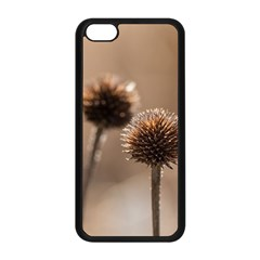 Withered Globe Thistle In Autumn Macro Apple Iphone 5c Seamless Case (black) by wsfcow