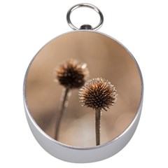 Withered Globe Thistle In Autumn Macro Silver Compasses by wsfcow