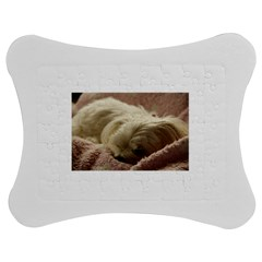 Maltese Sleeping Jigsaw Puzzle Photo Stand (Bow) by TailWags