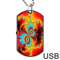 Crazy Mandelbrot Fractal Red Yellow Turquoise Dog Tag Usb Flash (two Sides)  by EDDArt