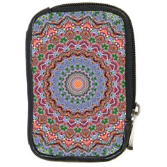 Abstract Painting Mandala Salmon Blue Green Compact Camera Cases by EDDArt