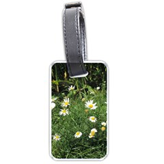 White Daisy Flowers Luggage Tags (two Sides) by picsaspassion