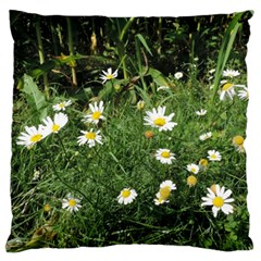 White Daisy Flowers Standard Flano Cushion Case (two Sides) by picsaspassion