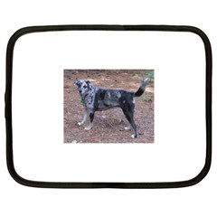 Blue Merle Catahoula Full Netbook Case (XL)  by TailWags