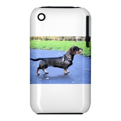 Wirehaired Dachshund Full Apple iPhone 3G/3GS Hardshell Case (PC+Silicone) by TailWags