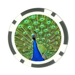 Bird Peacock Poker Chip Card Guards (10 pack)  by AnjaniArt