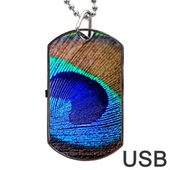 Blue Peacock Dog Tag Usb Flash (two Sides)  by AnjaniArt