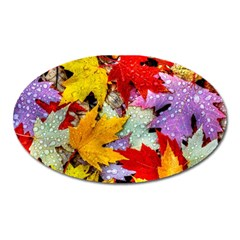 Coloorfull Leave Oval Magnet by AnjaniArt