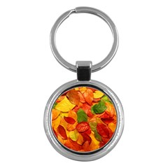 Colorful Fall Leaves Key Chains (round)  by AnjaniArt