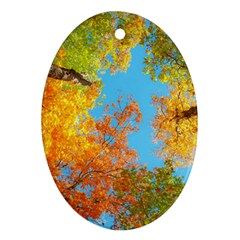 Colorful Leaves Sky Oval Ornament (two Sides) by AnjaniArt