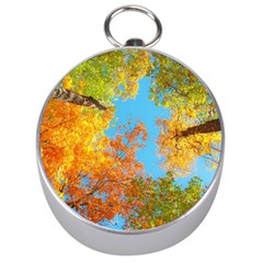 Colorful Leaves Sky Silver Compasses by AnjaniArt