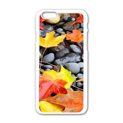 Colorful Leaves Stones Apple Iphone 6/6s White Enamel Case by AnjaniArt