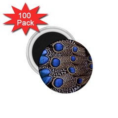 Feathers Peacock Light 1 75  Magnets (100 Pack)  by AnjaniArt