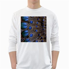 Feathers Peacock Light White Long Sleeve T Shirts by AnjaniArt