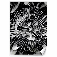 Black And White Passion Flower Passiflora  Canvas 24  X 36  by yoursparklingshop