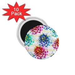Colorful Dahlias 1 75  Magnets (10 Pack)  by DanaeStudio