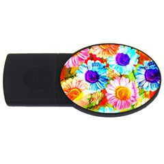 Colorful Daisy Garden Usb Flash Drive Oval (2 Gb)  by DanaeStudio