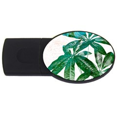 Pachira Leaves  Usb Flash Drive Oval (2 Gb)  by DanaeStudio