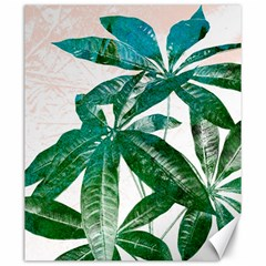 Pachira Leaves  Canvas 20  X 24   by DanaeStudio