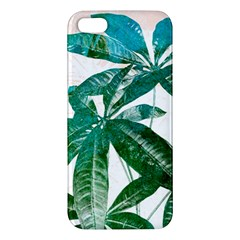 Pachira Leaves  Apple Iphone 5 Premium Hardshell Case by DanaeStudio