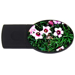Pink Flowers Over A Green Grass Usb Flash Drive Oval (2 Gb)  by DanaeStudio